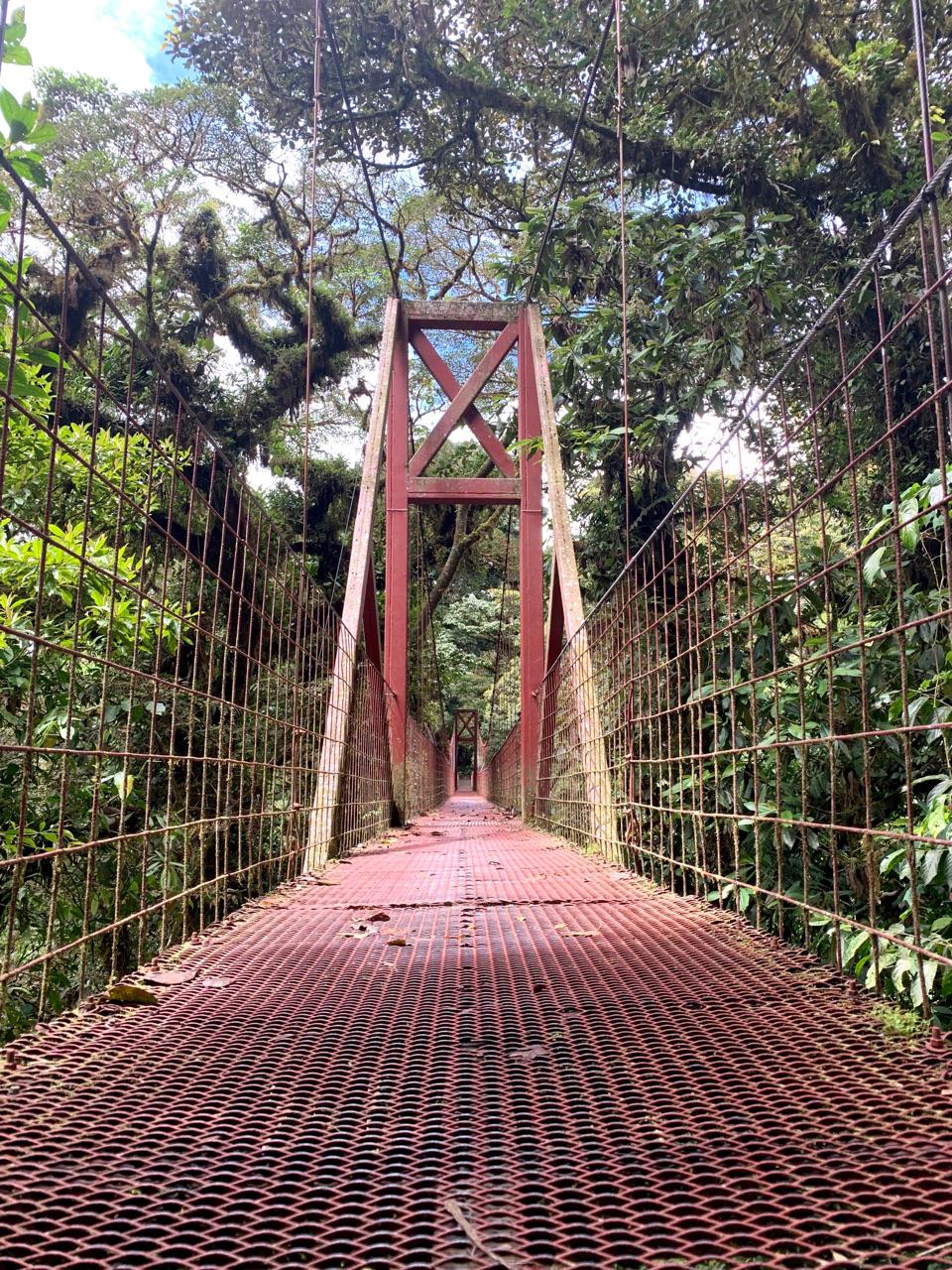 Op zoek naar de rijke kust van Costa Rica